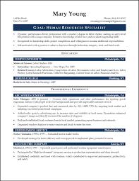 resume samples entry level resume format  entry