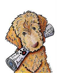 Small Picture 27 best labradoodle images on Pinterest Dog art Animals and