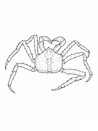 Crabe Animaux Coloriages Imprimer Dessins Et Coloriage Crabe Photo