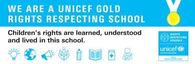 Image result for rights respecting school gold