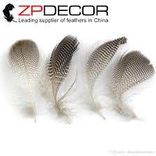retail and whole from zpdecor factory jpg