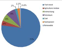 Energy Use Pattern In Nepal World Report Our Actions