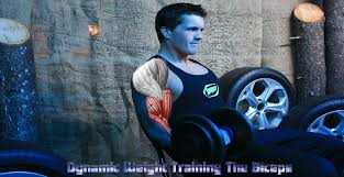 Gym Biceps Workout Chart Biceps Workout Routine
