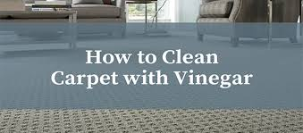 Clean paper towels or cloths. How To Clean Your Carpet With Vinegar Food Beverage Magazine