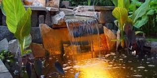 feature lighting ideas. Canna Lilies, Koi Pond And Waterfall Switzer\u0027s Nursery Landscaping  Northfield, Feature Lighting Ideas