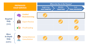 college essay guided brainstorming prepmaven check out our expert review service