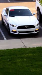 2015 ford mustang white. oxford white 2015 ford mustang ecoboost