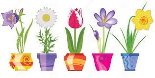 Znalezione obrazy dla zapytania wiosenne kwiaty