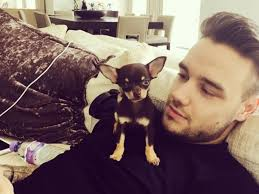 10 cute boys with equally cute dogs