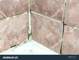 mold spots on bathroom walls black spots on bathroom wall bathroom black mold bathroom regarding black