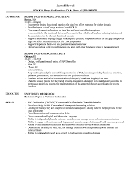 Fico Consultant Resume Fico Consultant Resume Samples Velvet Jobs 15