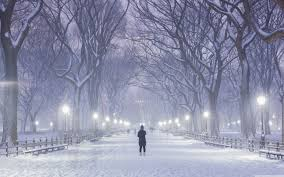 winter background images hd. Contemporary Winter Wide 1610 For Winter Background Images Hd