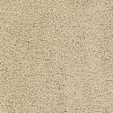 beige carpet texture. STAINMASTER TruSoft Chimney Rock 12-ft W X Cut-to-Length Cream/ Beige Carpet Texture