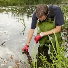 Ecologist Agexplorer Com