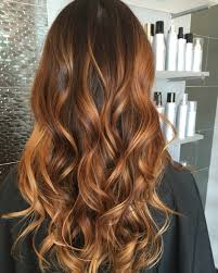 Summer coppery chestnut sombre using a wet dry brush glow method. Call for  inquires Austin