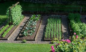 Small Picture How To Start Gardening Home Design Ideas
