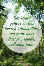Der Wald Gehoert Zu Den Besten Tankstellen Wo Man Seine Batterie