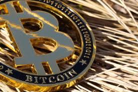 Dubbed purpose bitcoin etf, the fund will be managed by purpose investments inc, according to the official documents approved on thursday. Evolve Funds Secures Regulatory Approval To Launch Bitcoin Etf Etf Strategy Etf Strategy
