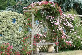 Красив дизайн, изпълнен с романтика, наситени цветове и високо качество. 28 Idei Za Cvetna Gradina Rozali Com