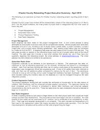 Executive Summary Format For Project Report Andone
