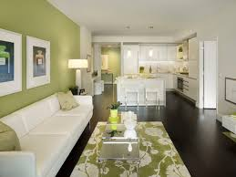 green rugs for living room. green accent wall living room contemporary with dark wood floor cushioned area rugs for i