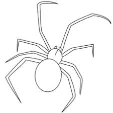 Small Picture Top 10 Free Printable Spider Coloring Pages Online