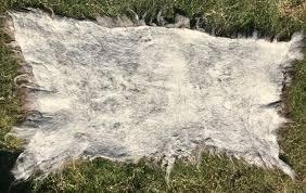 home decor felted lamb fleece rug copia cove icelandic sheep