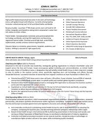 Ceo Resume Template Inspiration Executive Resume Samples Professional Resume Samples