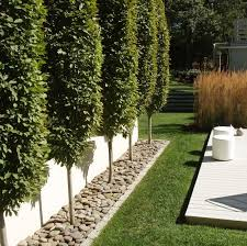 Small Picture ideas for garden border wwwlometscom Gardening Ideas
