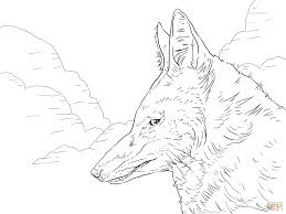 ethiopian wolf coloring page throughout coloring pages philip ethiopian acts 8 at coloring pages trafic booster biz on philip and the ethiopian eunuch coloring page