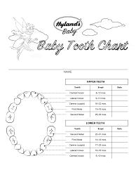 2019 Baby Teeth Chart Fillable Printable Pdf Forms