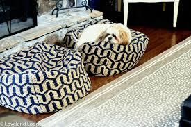 tips for choosing a pet friendly rug design dilemma loveland lodge dsc
