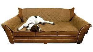 luxury pet furniture. Luxury Dog Furniture Bed Large Size Of Sofa All Pet Beds Designer