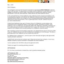 Executive Resume Cover Letter Sample Sales Executive Cover Letter Sample Fungramco 45