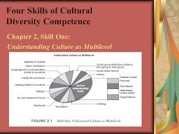 Four Skills of Cultural Diversity Competence - ppt video online ...