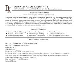 Resume Executive Summary Examples Beauteous Sample Summary For Resume Executive Example Examples Of On Great