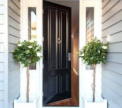 Perfect front doors ideas Glass Front Doors Home Entrances Ideas Best Front Entrances Best Plants For Front Door Front Doors Home Plants For Front Door Its All About Home Design Inspiration Diy Forgent Best Front Door Plants Images In Front Door Plants Best Plants For