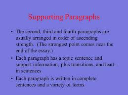 Image result for essay supporting paragraph structure image