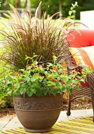 Small Picture 35 Beautiful Container Gardens Midwest Living