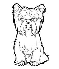 Our huge coloring sheets archive currently. Yorkie Coloring Pages Best Coloring Pages For Kids