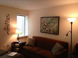 college living room decorating ideas. College Living Room Ideas Unique Decorating E