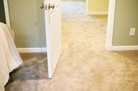 Stainmaster Carpet from Lowe s