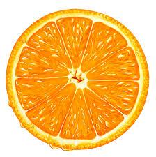 orange clipart png. orange slice png clipart png