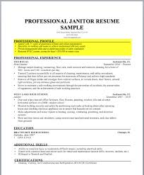Profile Example Resume How To Write A Resume Profile Examples Writing Guide Rg
