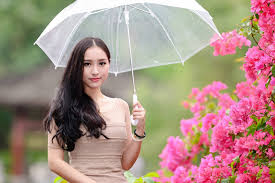 """""""相伴雨季,红尘有梦""""的图片搜索结果"""