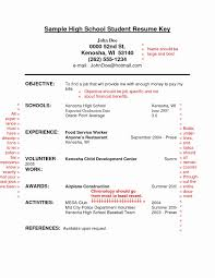 High School Student Resume Templates Sample Examples For College