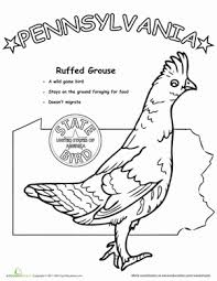 d86728e0501401ebf52945dea3ec356f pennsylvania state bird colors, animals and science on grade 1 science worksheets