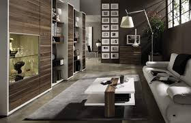 Living Room Designs For Men Video And Photos Madlonsbigbearcom - Contemporary apartment living room