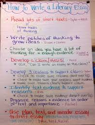 unit baby literary essay ms steiner s classroom how can i write an essay a strong opinion and supporting evidence about a piece of literature