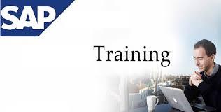 Blog - Digital Marketing and SAP Training Institute in Noida and Delhi